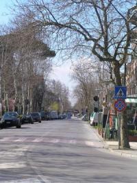Gran Viale Lido Venezia